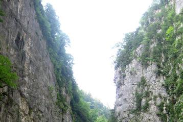 Горная дорога к озеру Рица