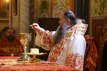 28 апреля. Во время Божественной литургии в Александро-Невском кафедральном соборе (фото Сергея Лотырева)