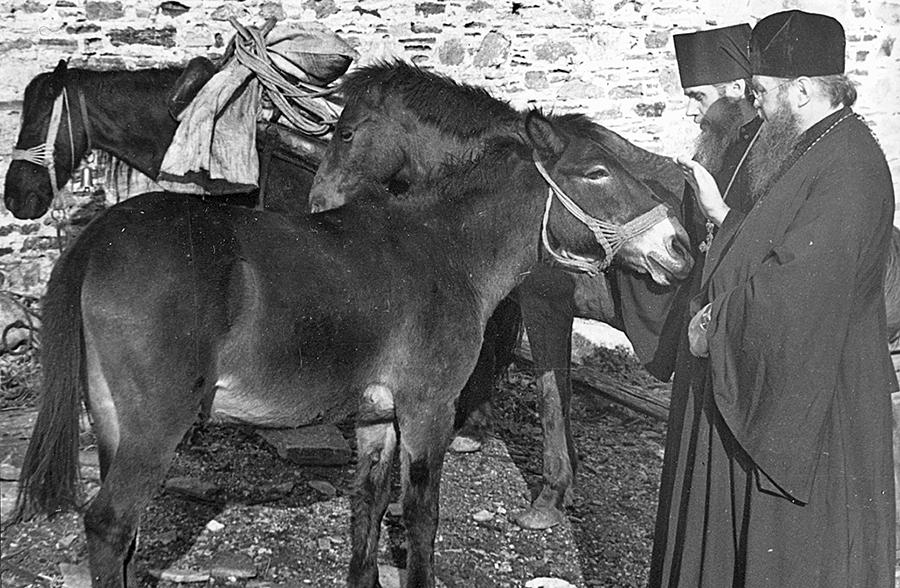 По пути в Зограф на мулах
