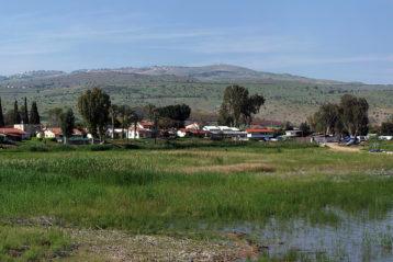 4 апреля. Тиверия. Галилейское озеро (фото Алексея Козориза)