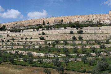 7 апреля. Иеруслим. Стены старого города (фото Алексея Козориза)