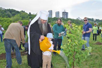 12 июня. Посадка деревьев и кустарников в Печерском православном парке Нижнего Новгорода (фото Алексея Козориза)